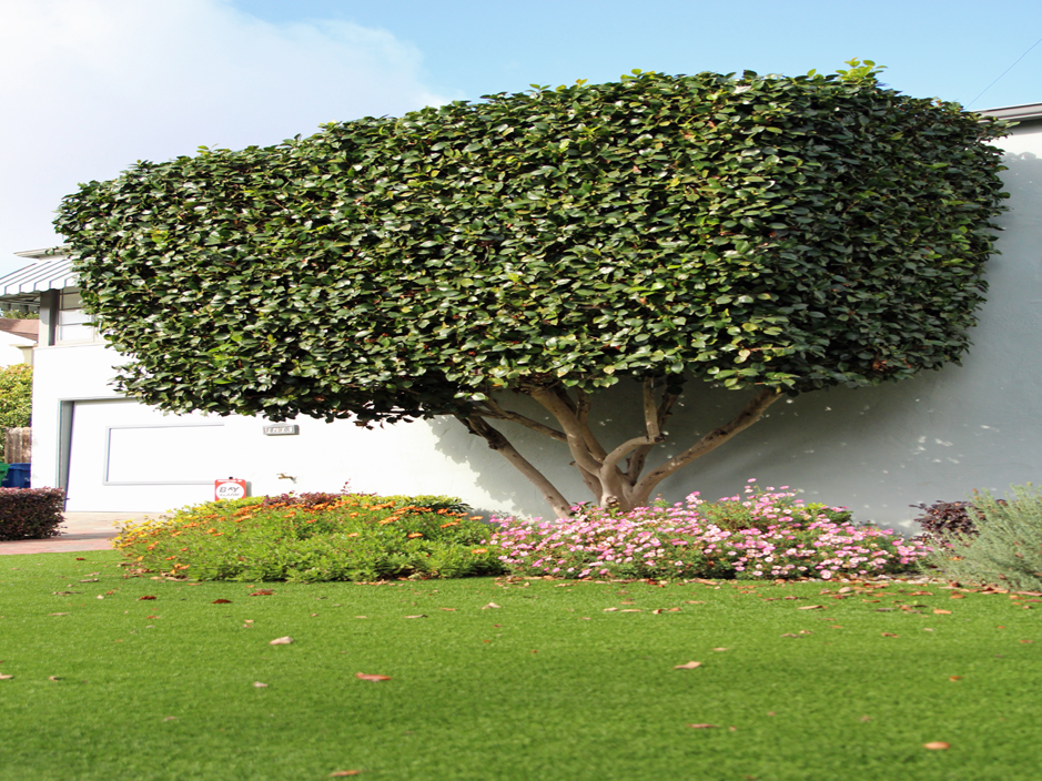 Garden Of Ideas Ridgefield