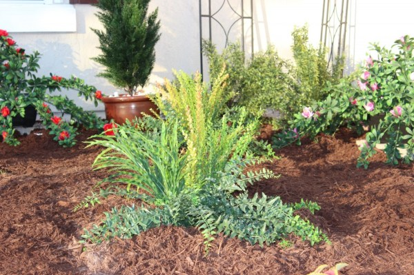 creating drought-proof landscape