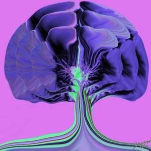 lungs, airways, trachea, bronchi, tree, Ginkgo, transport, tubes, trees, CTscan, art, the common vein, art in anatomy, Ashley Davidoff MD
