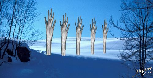winter, snow, cold, trees, hands, bones, xrays