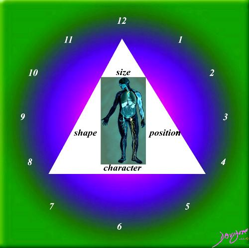 the common vein, units to unity, equations, principles, science, algebra, time, structure, mathematics