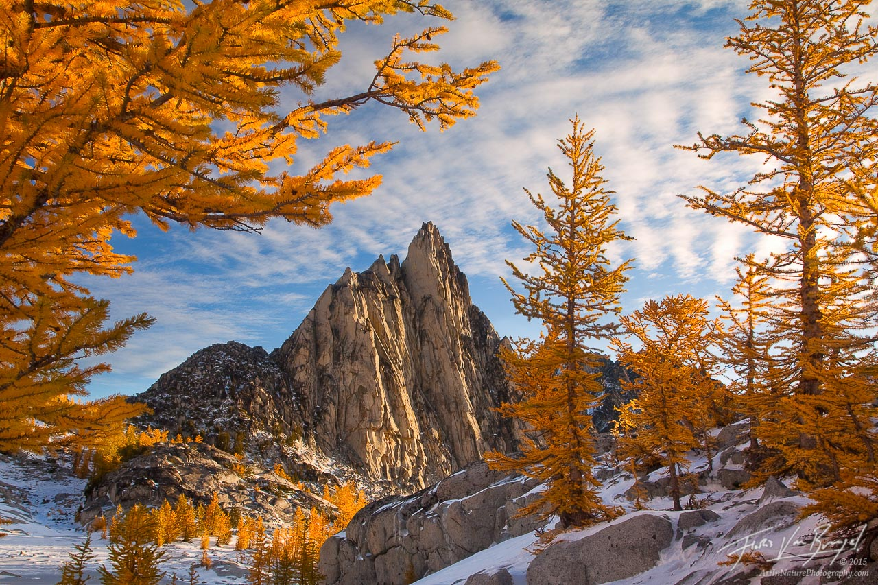 Fall Wallpapers For Desktop Idaho Morning Gold Enchantments Wa Art In Nature Photography
