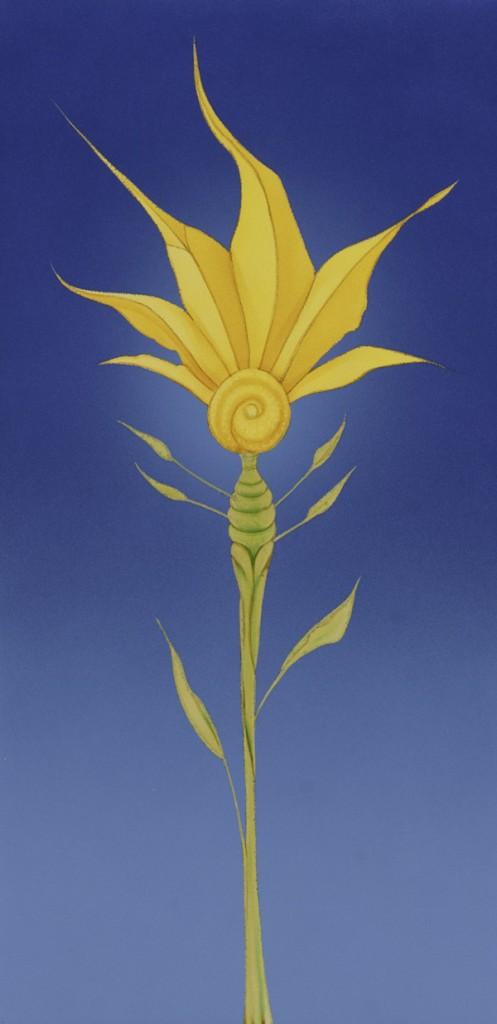 KeithMcMenamy_sunflower
