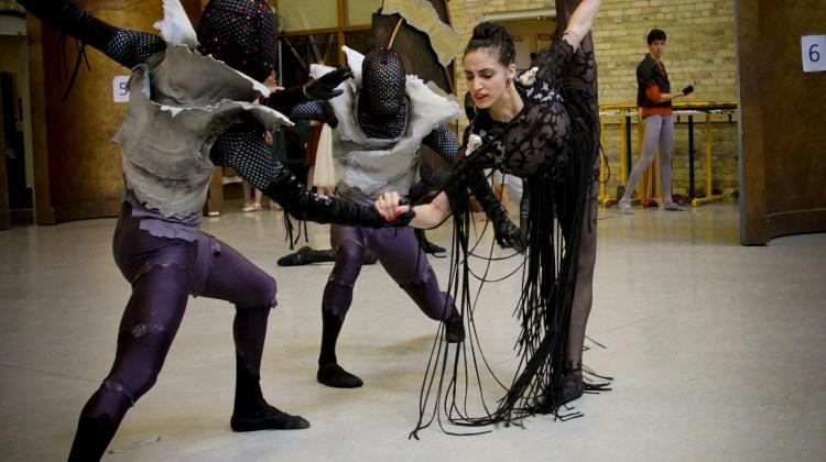 Beyond Fairytale Formula Milwaukee Ballet Presents Michael Pinks