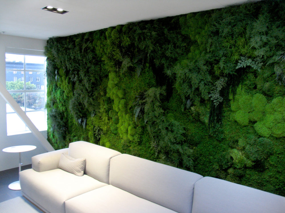 Custom Moss Walls  Installations for Commercial Spaces