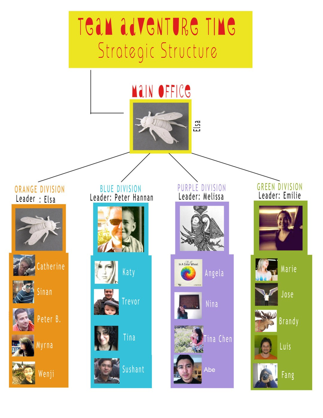 team strategic structure