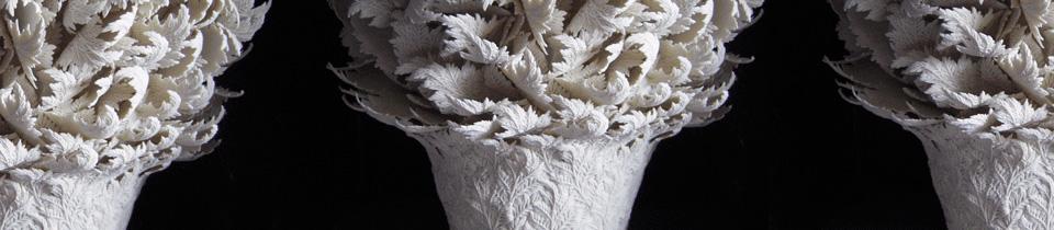 Hitomi Hosono's Organic Porcelains.