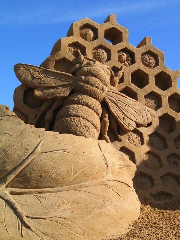 Amazing Sand Sculptures Fergus Mulvany. Art
