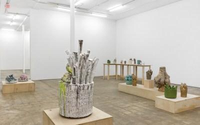 Ceramics by David Hicks