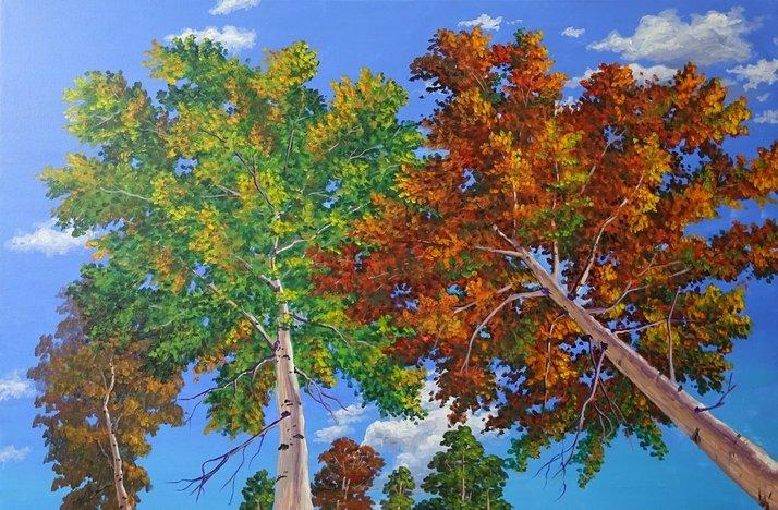 Saber Ben Artist Painting Lessons Video DVD Online Free