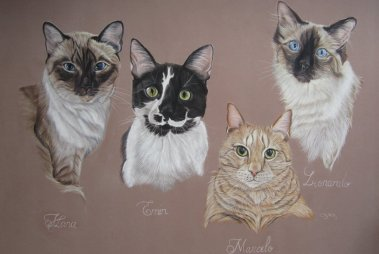 chats-pastels