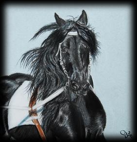 Exemple de cheval noir aux pastels