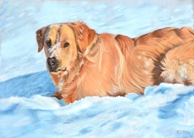 golden-retriever-pastel