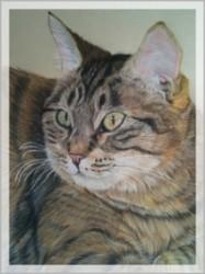 portrait pastels 2