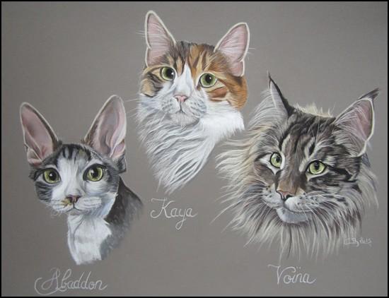 chats pastels secs
