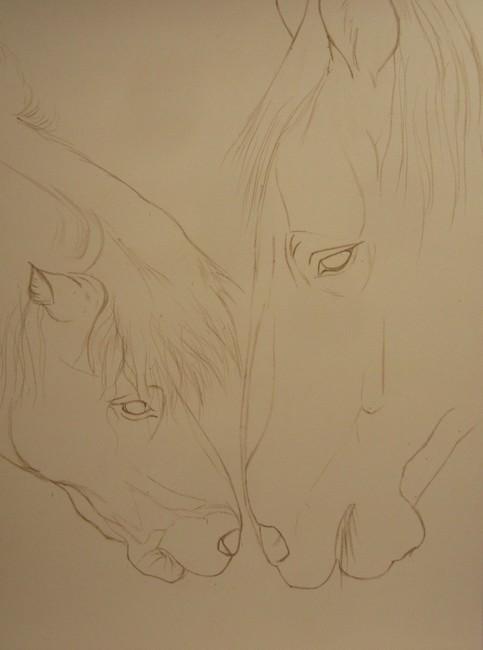 dessiner chevaux