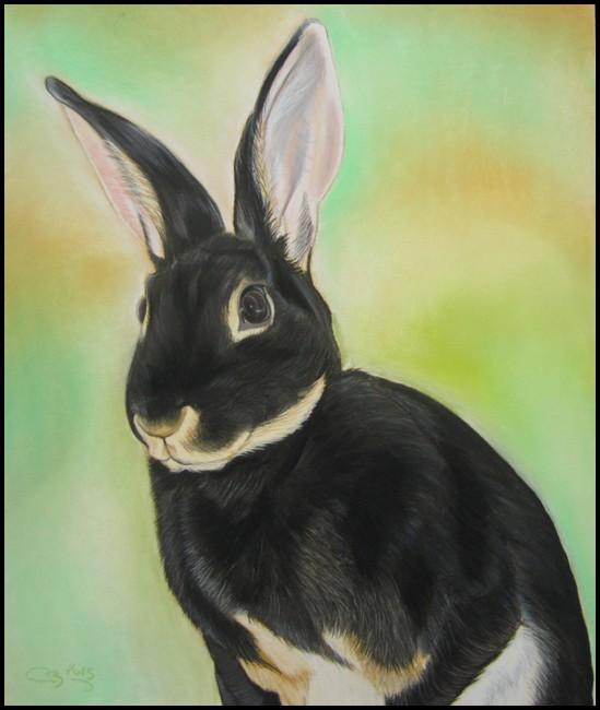 portrait lapin