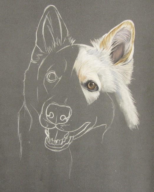 dessiner chien pastels