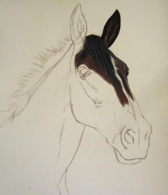 portrait cheval pastel