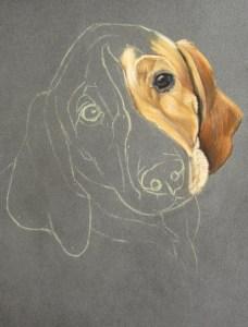 dessiner chien pastel