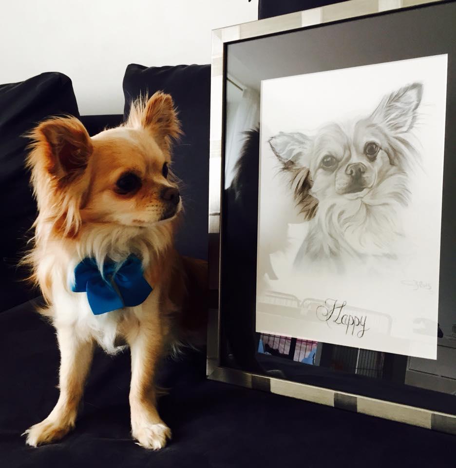 portrait chien commande
