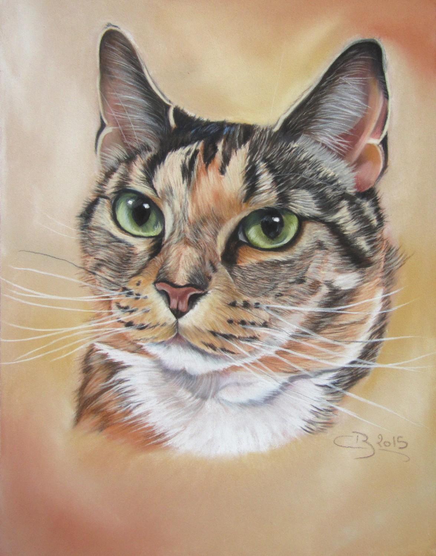Moustaches d 39 animaux aux pastels secs - Photo de chat en dessin ...