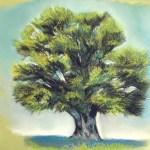 arbre-final