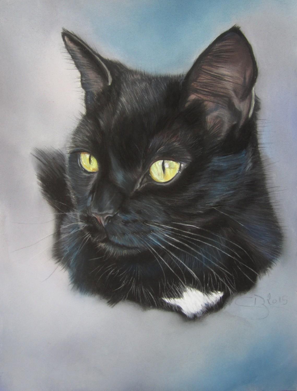 Chat noir aux pastels - Dessin chat noir ...
