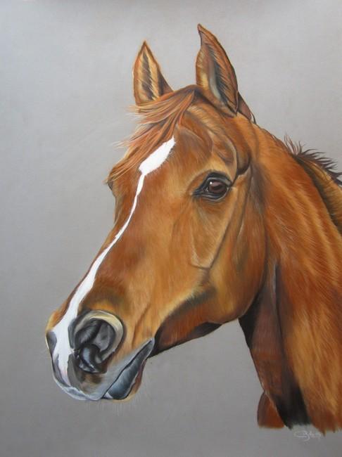 portrait cheval alezan