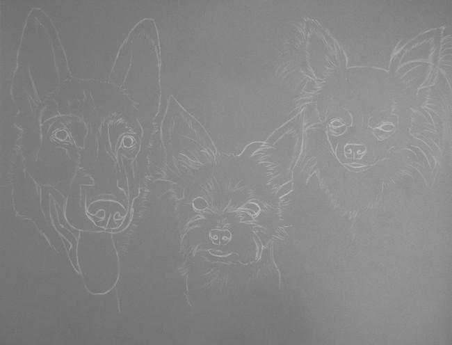 comment dessiner chiens