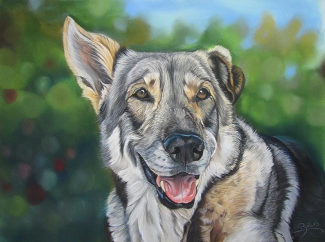pastel chien loup saarloos