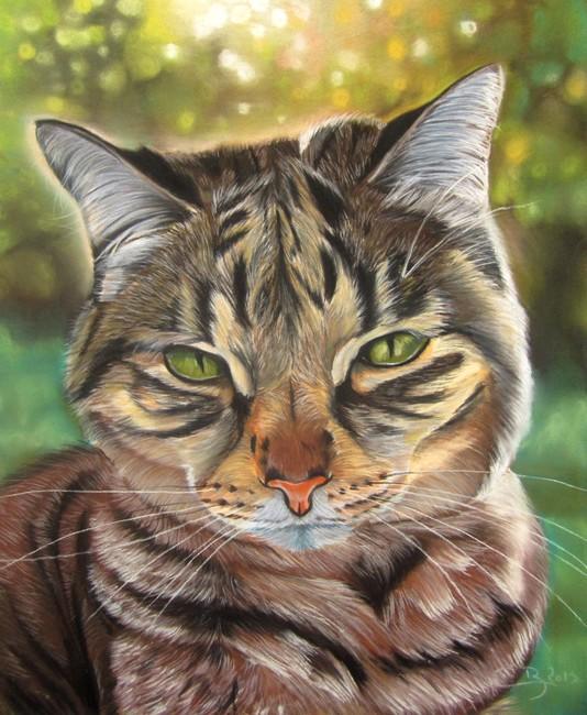 beau pastel de chat
