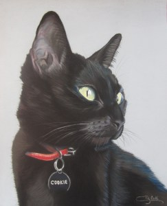 chat noir pastels