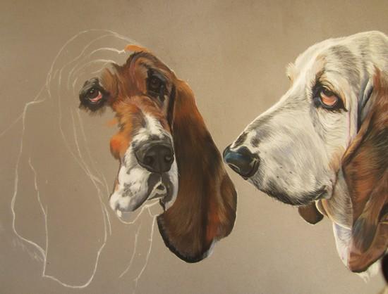 bassets hounds pastel