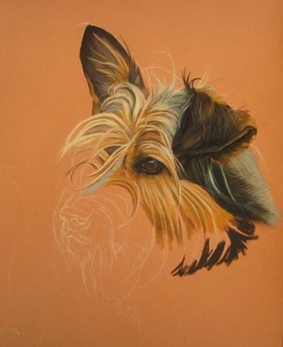 peindre chien