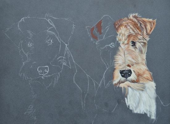 peinture fox terrier