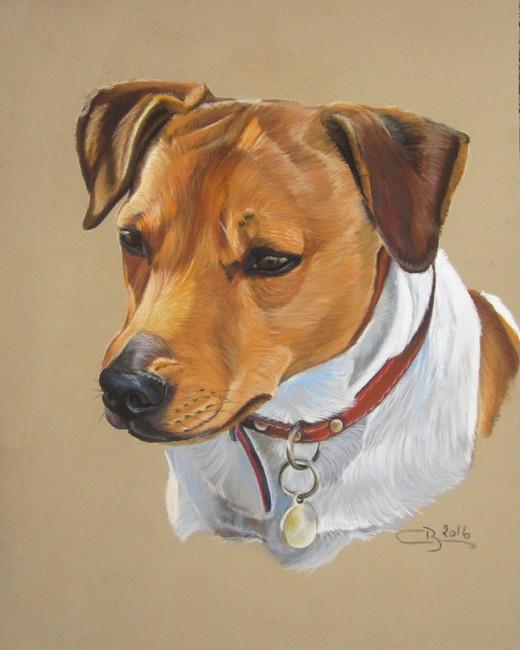 portrait de Jack Russel