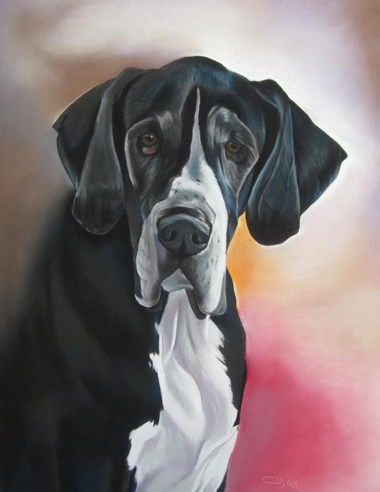 portrait dogue allemand pastel