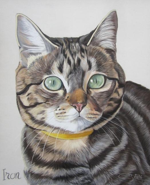 chat-tigre-pastel-sec