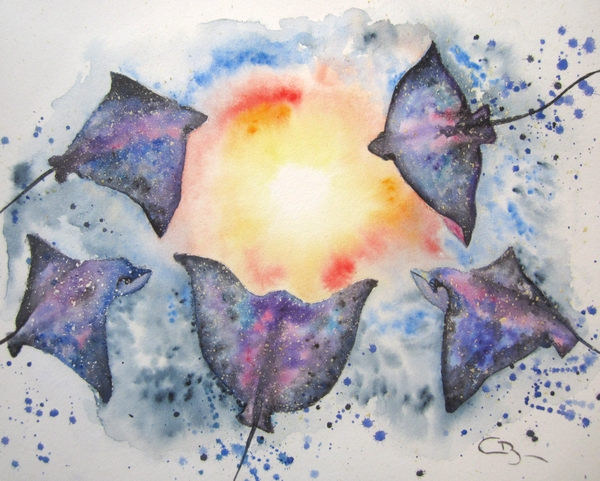 raies-aquarelle