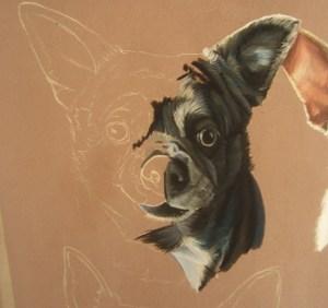 pastel-chiens
