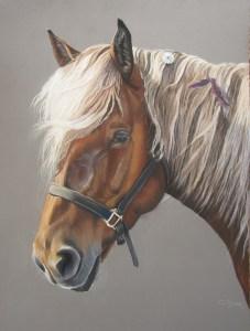 cheval-pastel-sec