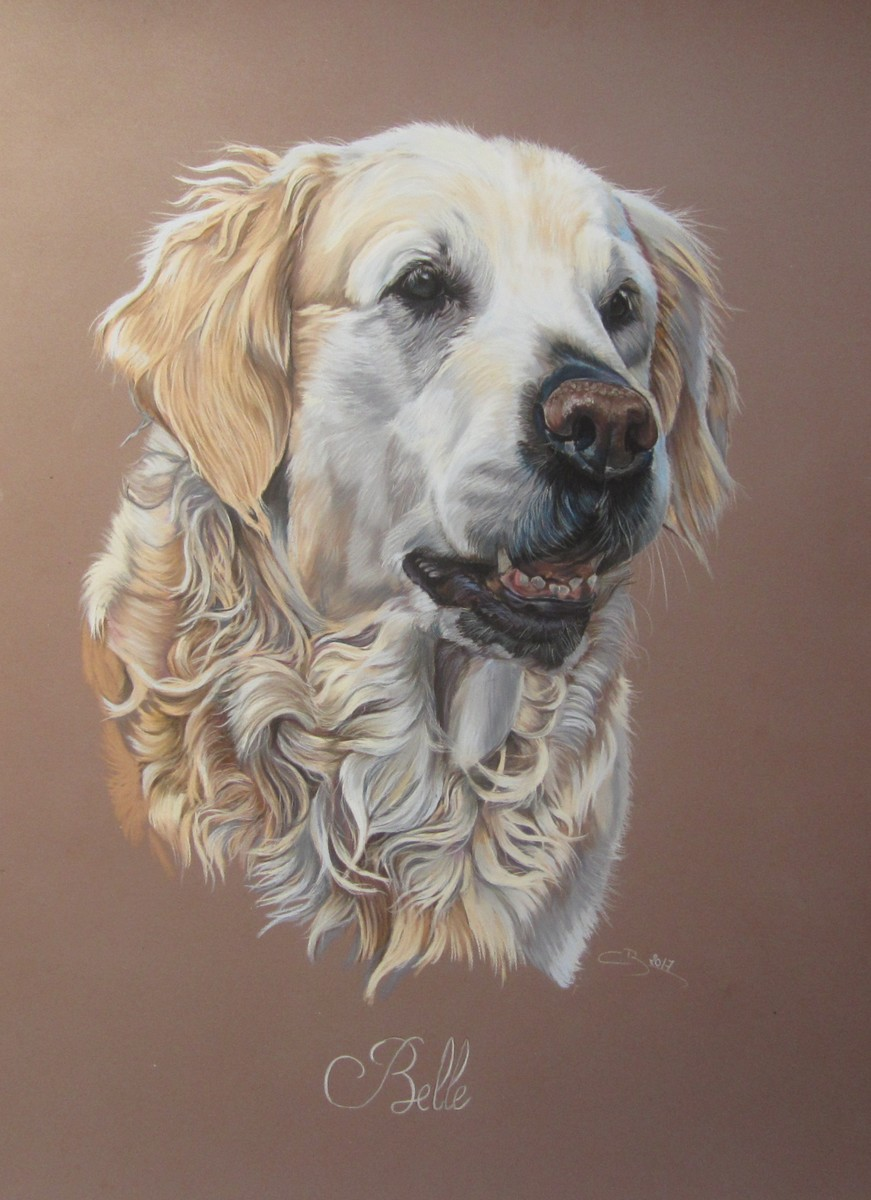 golden retriever pastel