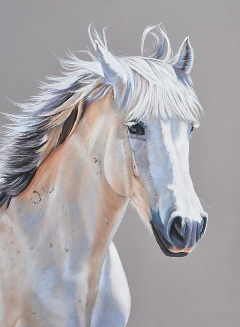 cheval panpastel