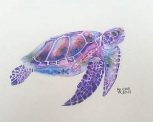 tortue-beatrice