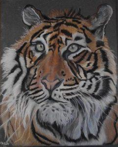 tigre-martine