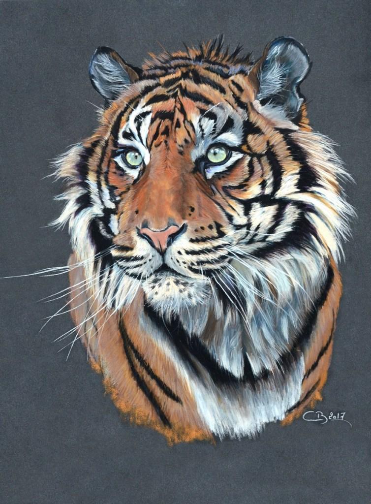 tigre-pastel