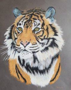 tigresse-amelie