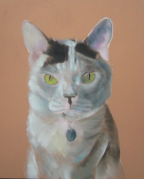 chat aux panpastel