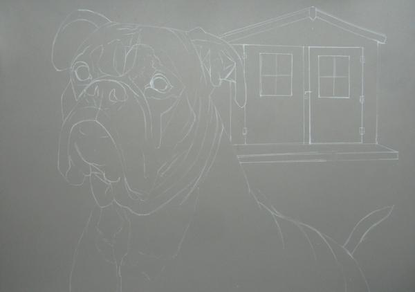 dessin chien boxer